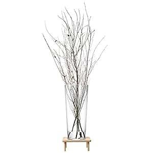 LSA International 71 cm Stilt Vase and Stand, Ash