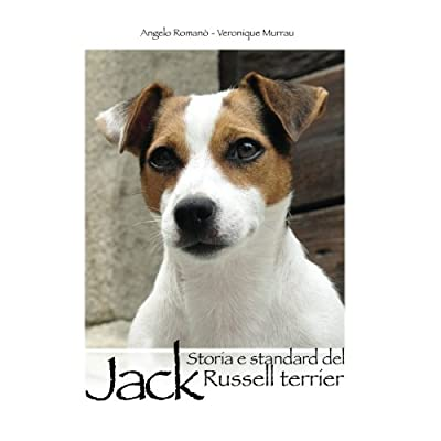 Storia E Standard Del Jack Russell Terrier