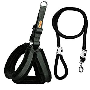Petshop7 Premium Qualtiy Fur Padded Nylon Dog Harness & Leash Rope 1inch - Mrdium (Chest Size - 28-33inch)
