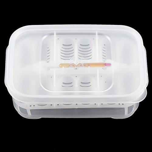 Pratico-Vassoio-di-incubazione-delluovo-del-Rettile-12-Fori-di-plastica-con-termometro-Strumento-di-incubazione-delluovo-di-incubazione-del-Serpente-Chiaro