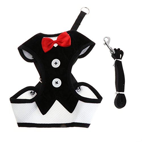 Qiuxiaoaa Pet Clothing Set Smoking Katze niedlich Bowtie Leine & Halsband britischen Stil Kleiner...