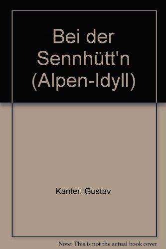 bei-der-sennhuttn-alpen-idyll-akkordeon