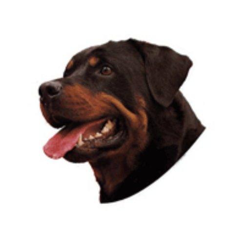 World Stickers Schwandt Heimtierbedarf 12144 Aufkleber 4 Stück ca. 80 x 80 mm für Warnschild Rottweiler Kopf -