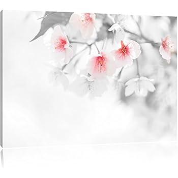 De Très Belles Fleurs De Cerisier Noir Blanc Taille 60x40