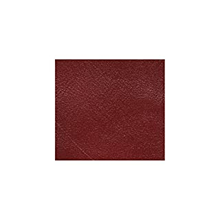 Alta Leather - Coloured leather resin - Cat scratches on leather. Size: 60 ml
