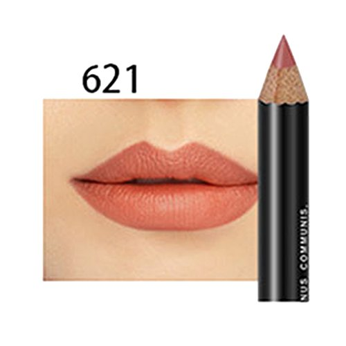 ROPALIA 3 en 1 Professionnel Crayon à Lèvres Matte Waterproof Eyeliner Crayon à Sourcils Longue Tenue (A21)