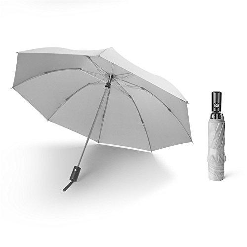 Rainkuu Mini Automatik Taschenschirm Reise Windguard Regenschirm Wind Sturm Damen,Gray
