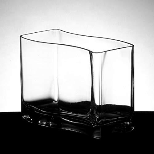 Jiangu - vaso in vetro a forma di s, per pesci rossi, mini acquario, vaso in vetro idroponico
