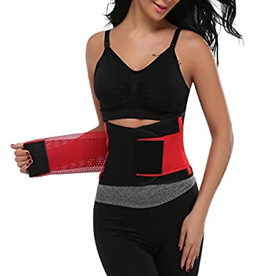 Miss Moly Adjustable Waist Trimmer Belt Waist Trainer For Weight Loss Back Support Abdominal Girdle For Men and Women