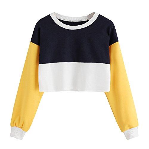Kapuzenpullis Sweatshirt Tops LUVERSCO Mode FüR Frauen Lange äRmel Patchwork O-Hals Pullover LäSsig Bluse Pullover (M) (Hund Champion Kleidung)