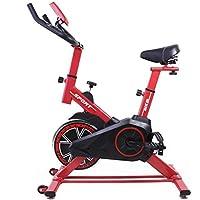 Bicicleta Regulable Ciclo Indoor Dragon One con Volante de inercia de 15 kg Rojo