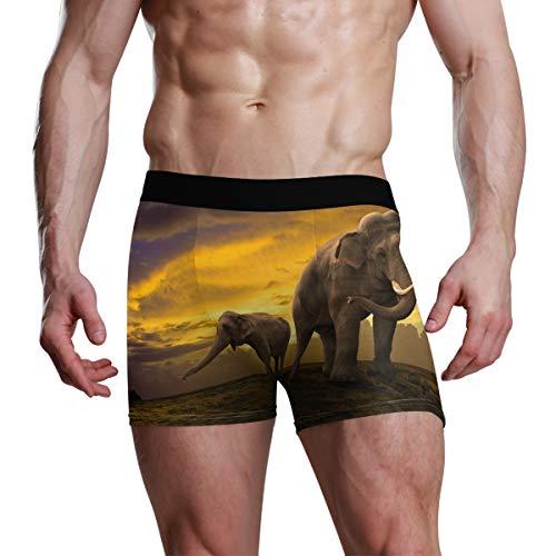 FANTAZIO - Calzoncillos bóxer para Hombre, diseño de Elefantes 1 L
