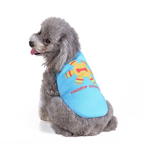 Kostüm Tragen Hunde Kasten - Haustier-Weste, Haustier-kleiner Hundekleidung-T-Shirt Gestrickte Mantel-Kasten-Schutz-Art- und Weisekleider zwei Füße tragen Kostüm-Weste 2 Farbe u. 4 Größe (Color : Blue, Size : S)