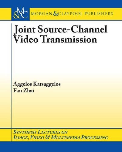Joint Source-Channel Video Transmission (Synthesis Lectures on Image, Video, and Multimedia Processing)