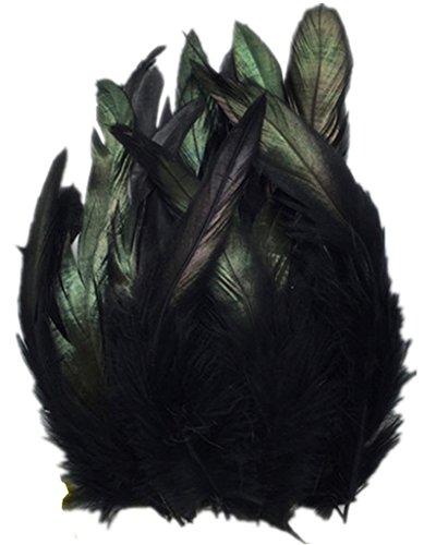 ERGEOB Hahn Feder - Ideen für die Kostüme, Hüte, Home dekor circa 100 stück 12-18cm (Kostüm Ideen Keine)