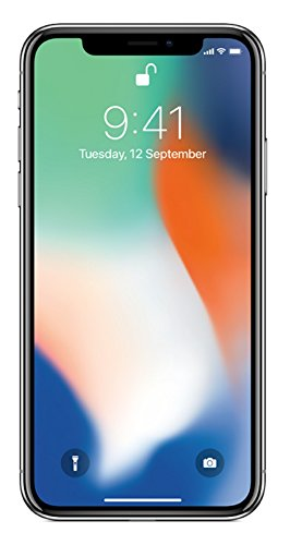 Apple iPhone X (Silver, 256GB)