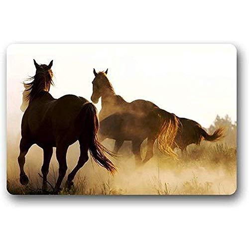 fingww Tappetino Tappetini per Porte Wild Horses Wild Running Zerbino Bagno Tappeti di Benvenuto Tappetino Tappeto Tappeti per Interni/Esterni 40X60cm