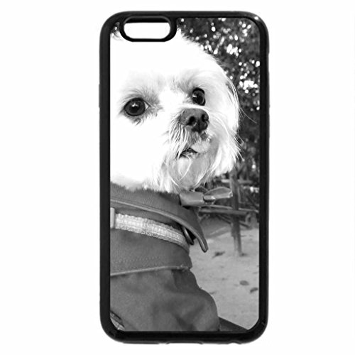 iPhone 6S Case, iPhone 6 Case (Black & White) - Cute dog