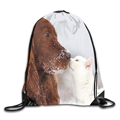 Ejjheadband Winter Duvet Cover Set Twin Size, Irish Setter And Cute White Cat In Snow Playing Together Friendship Love Adornment,Drawstring Shoulder Backpack