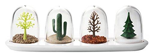 QUALY QL10121 Gewürzmenage Four Seasons Spice Shaker 8,5 x 25 x 8,2 cm - Kaktus Salz