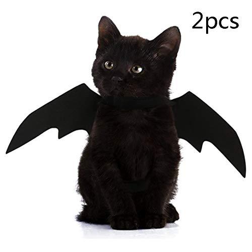 Kostüm Dress Fancy Bat - Dong Ran Halloween Pet Katze Hund Fledermaus Kostüm Fancy Dress Costume Outfit Bat Vampire Wings, Halsumfang von 24-36cm Brustumfang von 36-42cm