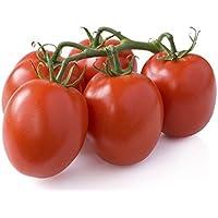 50 graines - TOMATE Roma VF - Résistante aux maladies