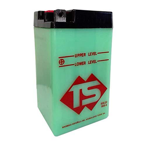 Batteria standard TS B49-6 6 V 8 Ah acido non incluso