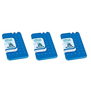 41yIZyHYuCL. SS300  - Thermos Cool Bag Ice Pack Freeze Board 200G PACK OF 3