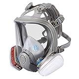 Maschera integrale di protezione delle vie respiratorie con la più bassa resistenza respiratoria per gas organici, vapori e particelle polvere verniciatore di sicurezza EN certificato ENJOHOS