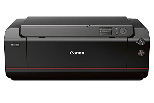 Canon imagePROGRAF Pro 1000dina243,18cm/171