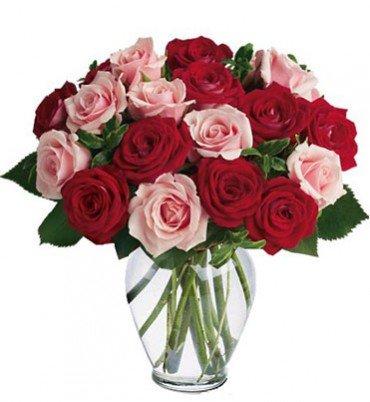 oferta-ramo-de-12-rosas-naturales-frescas-en-color-mixto-rojo-y-rosa-suave-flores-a-domicilio