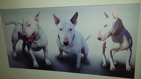 Iconic English Bull Terrier Collage Stretched & Mounted Canvas Art Print Brand New