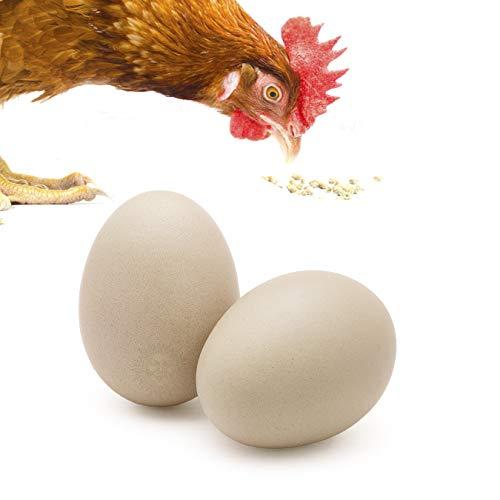 SunGrow 2Keramik Huhn Eier-Natürliche 7cm (7cm) Nest Eier-Fördert Ei verlegen und Verlangsamt Das Picken & Essen-Ideal für broodiness Test und Einzigartige Dekoration zu Hause -