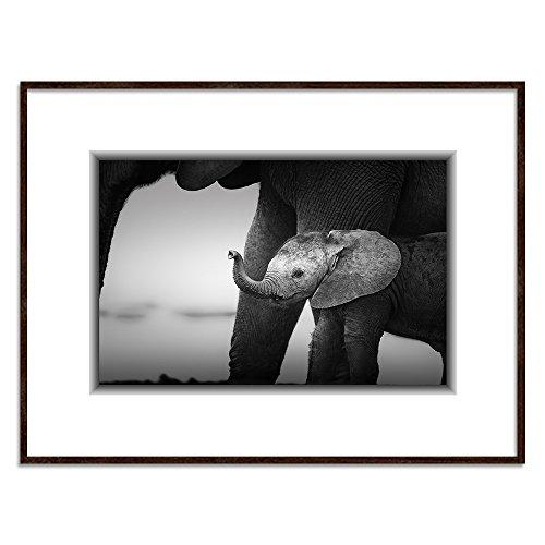 Feeby. Art Block Cuadro Elefantes Deco Panel con Marco Negro, Tamaño: 120x80...