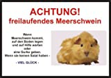 INDIGOS UG - Achtung / Fun Schild Meerschwein Türschild - laminiert DIN A5
