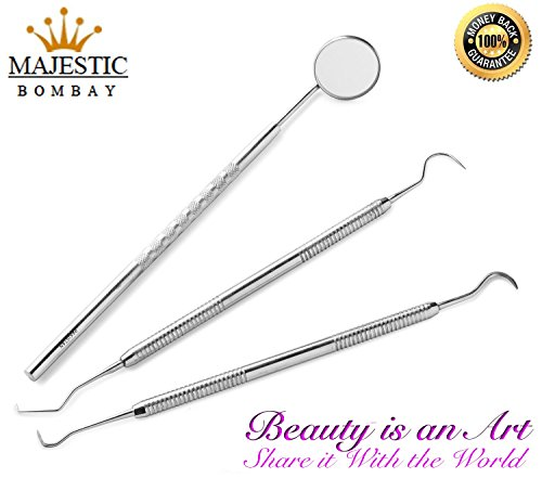 dental-hygiene-kit-includes-stainless-steel-tarter-scraper-scaling-remover-dental-toothpick-mouth-mi