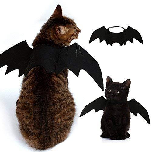 MSAI Halloween Pet Bat Wings Katze Hund Fledermaus Kostüm