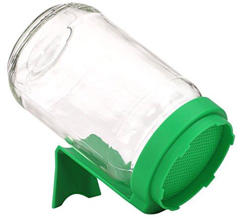 Dehner Sprossenglas, Ø 8 cm, Höhe 16 cm, Glas