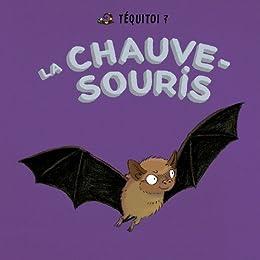 La chauve-souris (Téquitoi ?) par [Aubin, Blandine]