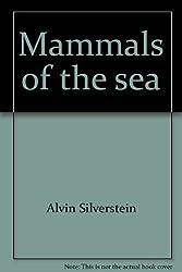 Mammals of the sea