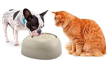 IMAC - Fontaine à eau CIOTTOLI 2L Pour Chat et Petit chien