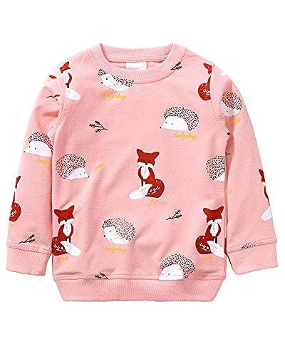 Little Hand Mädchen Sweatshirt für Kinder Baumwolle Top Casual Jumper Kleinkind Langarm Pullover, Gr.- 98 (HerstellerGröße: 2-3Y), Rosa -