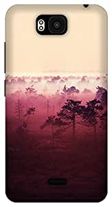 The Racoon Lean red wood hard plastic printed back case / cover for Huawei Honor Bee