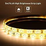 SUNXK Striscia LED Impermeabile Le 5M, 300 unità Nastro LED SMD 2835, 1200lm, Bianco Caldo, Nastro LED 12V DC, Esterno con Luce Color : Warm White, Size : 2 x 5M (Waterproof)