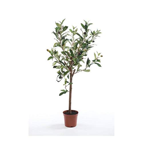 Olivenbaum, Stamm, Baum, Kunstpflanze/blume, 65cm, im Topf