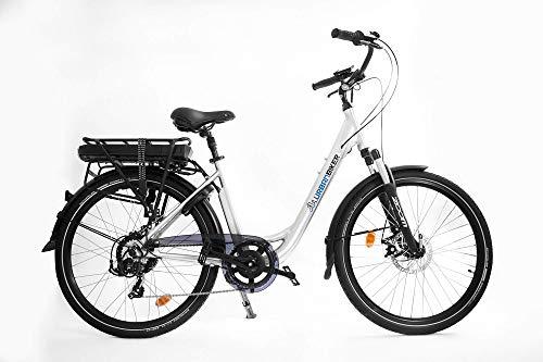 urbanbiker–Städtische Elektrofahrrad Akku mit 13Ampere im Lowrider Glanz, grau