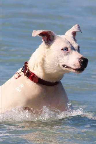 happy-dog-swimming-in-the-ocean-pet-journal-150-page-lined-notebook-diary