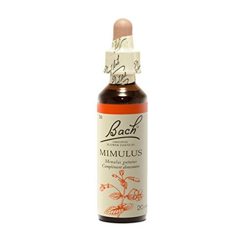 Bach Mimulus (Gefleckte Gauklerblume) – 20 ml