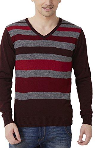 Peter England Regular Fit Sweater _ Psw51500639_s_ Maroon