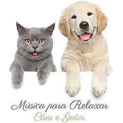 Música para Relaxar Cães e Gatos: Animais de Estimação Tranquilos, Cães Adormecidos, Terapia para Ansiedade de Cachorro e Hiperatividade de Gato